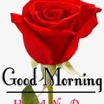 Red Rose Good Morning Images 70