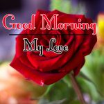Free New Morning Wishes Images With Red Rose Pics Images