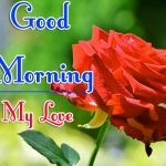 Red Rose Good Morning Images 73