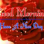 Red Rose Good Morning Images 75