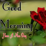 Red Rose Good Morning Images 76