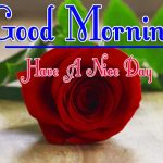 Red Rose Good Morning Images 77