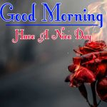 Morning Wishes Images With Red Rose Pics Free Download