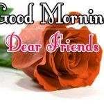 Morning Wishes Images With Red Rose Images gf