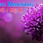 Flower Good morning HD Images 7
