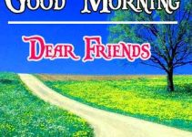 Good Morning Images Pics Free Download for Whatsapp HD Download