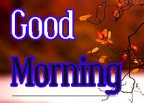 Good Morning Wallpaper 9