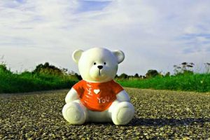 525+ Teddy Bear Images Pics HD