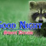 Best Night Images HD Download 17