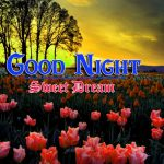 Best Night Images HD Download 49