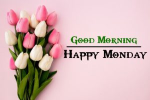Best Quality Monday Good Morning Pics Images Download 1