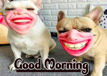 Funny Good Morning Wishes Images Download 104