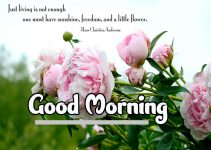 Good Morning Pics Download 91