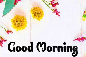 6815+ Good Morning Images with English Thought photo Download