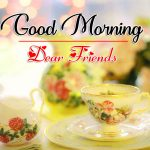 New Flower Good Morning Pics Download