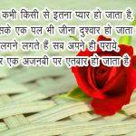 Rose Free Hindi love Shayari Wallpaper Download for Whatsapp