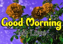 Best HD Good Morning Wishes Pics Images Free