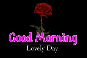Flower 4k Good Morning Wallpaper Download