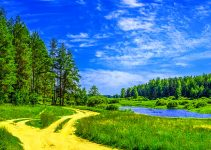 Nature Whatsapp Dp Images Download