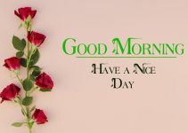 New Good Morning Wallpaper Download  For Hum Tum Friend