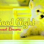 Best Good Night Pics Images