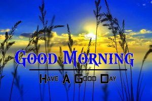 New Good Morning Wallpaper Images 5