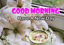 Good Morning Photo Hd Free